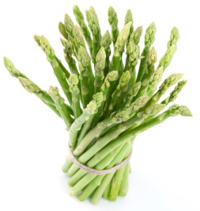 Sheaf of asparagus on a white background.