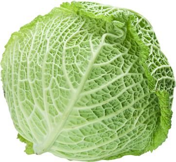 Image of cabbage on white background. The file contains a path to cut.
